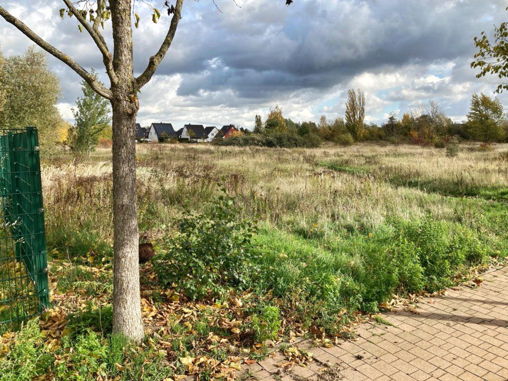 Mahlsdorf LIVE - 30 Millionen-Euro-Projekt: Bau einer Gemeinschaftsschule in Landsberger Straße nimmt nächste Hürde